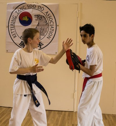 tang soo do pad work